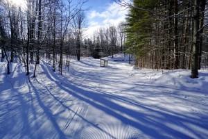 Sawmill Ski Trail - Jan 28, 2016