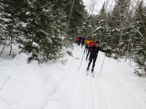 Line of skiers at the Colpoys Ski Trail, Bruce Peninsula, Ontario
