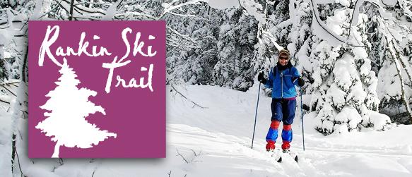 Bruce Ski Club - Rankin Ski Trail header - solo cross-country skier
