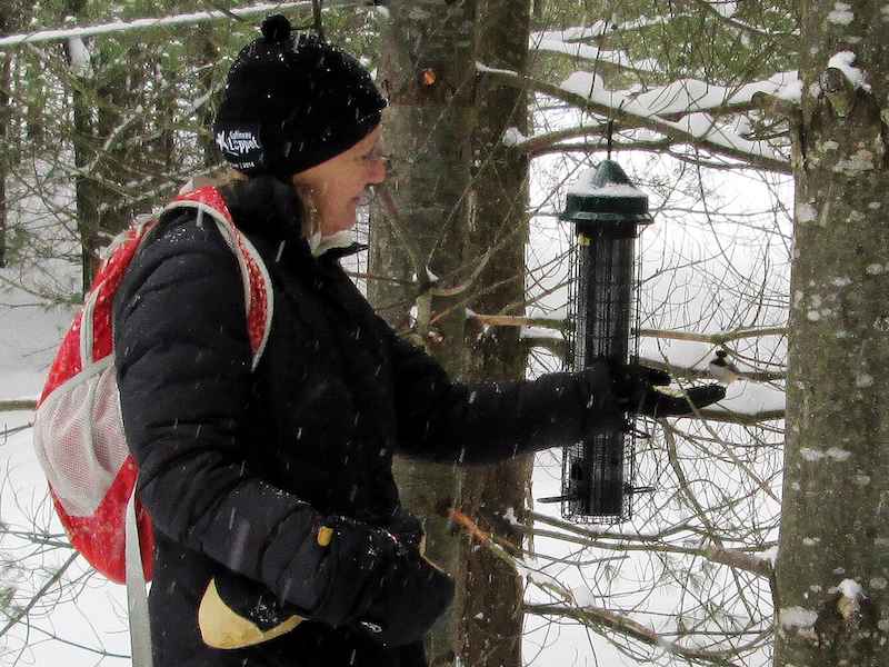 Bruce Ski Club Volunteer Feeding the Birds at Sawmill Nordic Centre in Hepworth, Ontario