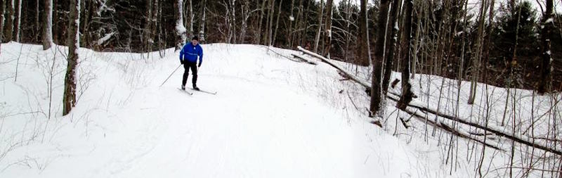 Bruce Ski Club - Sawmill Nordic Centre - Cross-Country Skier on a Hill