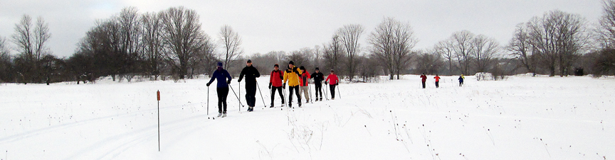 Line of Skiers at Colpoys Bay Ski Trail in Wiarton, Ontario