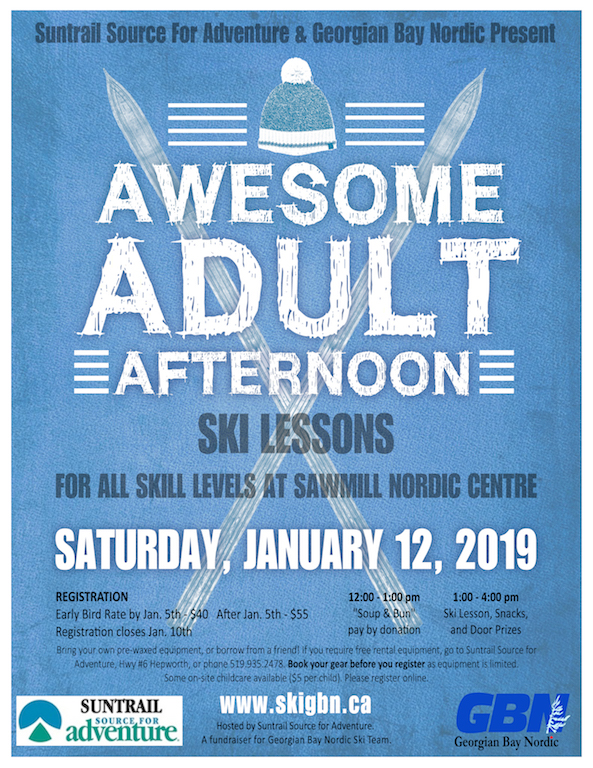 Awesome Adult Afternoon Ski Lessons 2019 Poster
