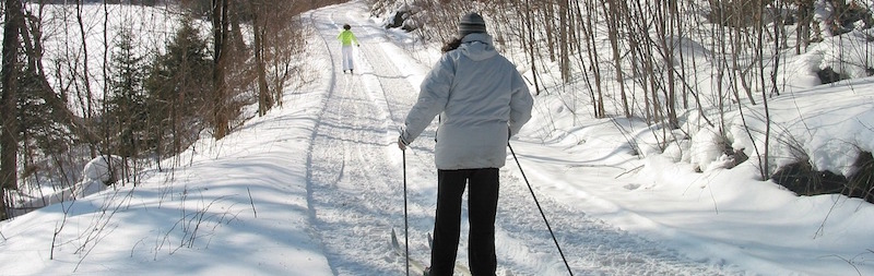 People cross-country skiing