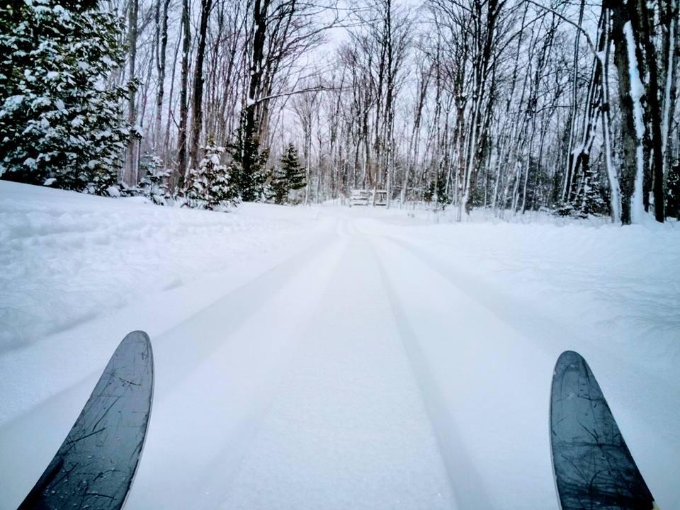 Colpoy's Ski Trail - Tips of Skis on Ski Trail