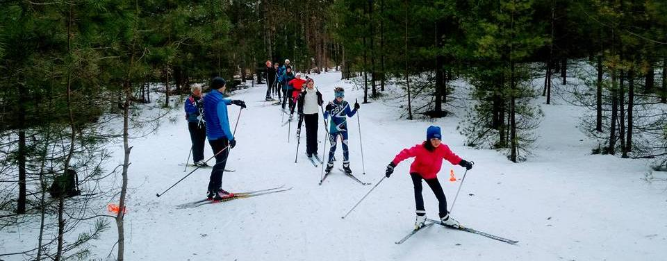 Sawmill Nordic Centre, Hepworth, Ontario - Jackrabbits skiers