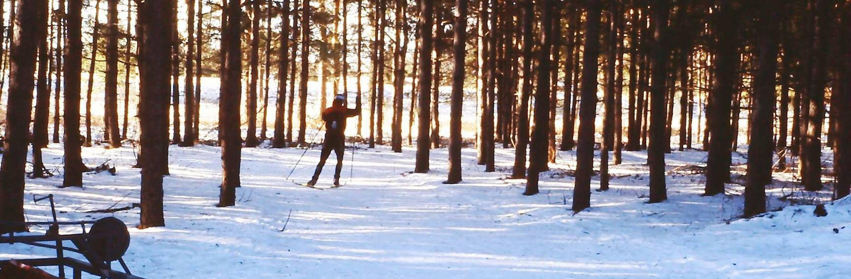 Cross-country skier at Sawmill Nordic Centre, Hepworth, Ontario - 1999