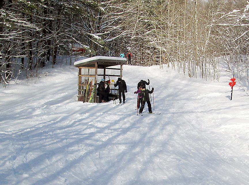 children cross-country skiing